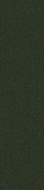 7335017999B24400_on-line_forest_va1